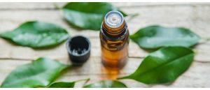 Uleiul de arbore de ceai este benefic pentru bolile gingivale.